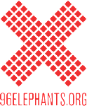 96 Elephants logo