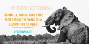 Be elephant Ethical