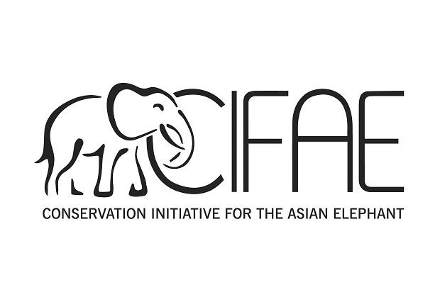 CIFAE_Logo_Remastered-HighRes_Page_1_Web-verysmall