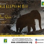 DM_World Elephant Day 2020_Quiz