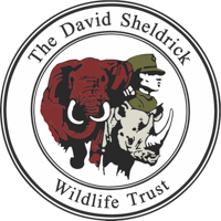 The David Sheldrick Wildlife Trust logo