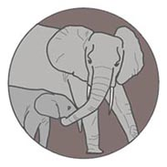 Elephant Listening Project logo