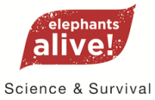 Elephants Alive logo