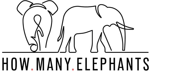 How Many Elephants logo