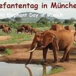 Munich WED event