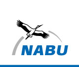 NABU International logo