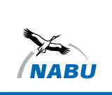 NABU International logo