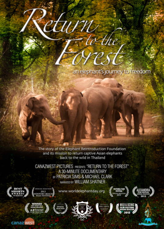 d3367e4cb19a ... plight of Asian and African elephants in a special presenation by World  Elephant Day founder