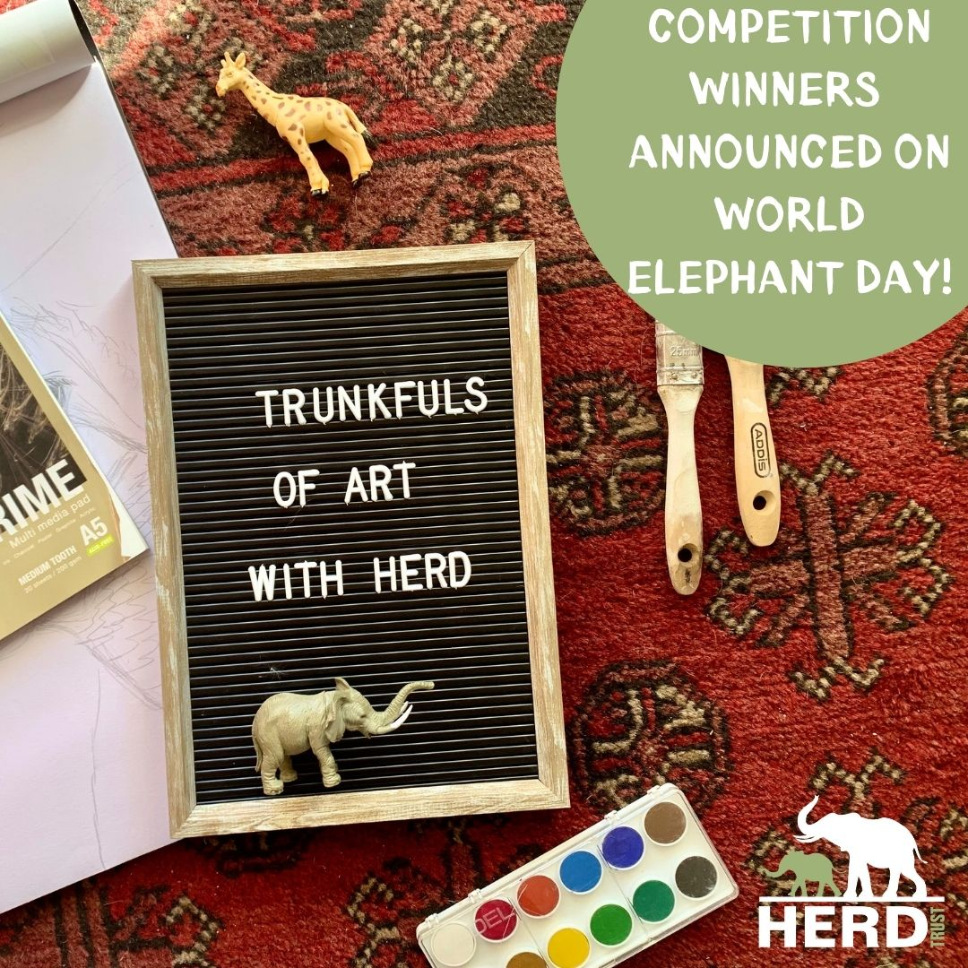 World Elephant day 2021 with HERD