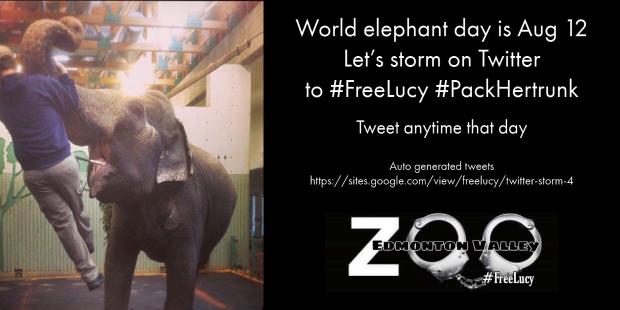 elephant day 4 (1)