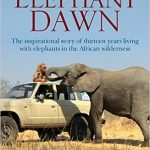 elephantdawn