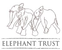 Amboseli Trust for Elephants logo