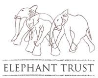 Amboseli Trust for Elephants logo