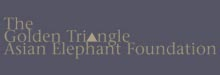 The Golden Triangle Asian Elephant Foundation  logo